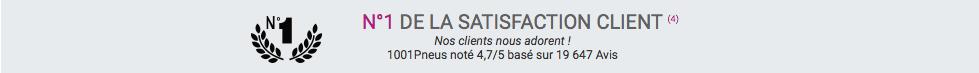 Une capture d'écran de 1001pneus où il est écrit N°1 de la satisfaction client.