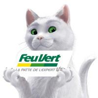 Le chat de Feu Vert.